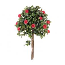 Розы штамбовые: посадка и уход